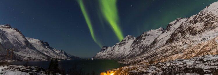 Pozycjonowanie w Norwegii. Jak zwiększyć sprzedaż online na norweskim rynku?