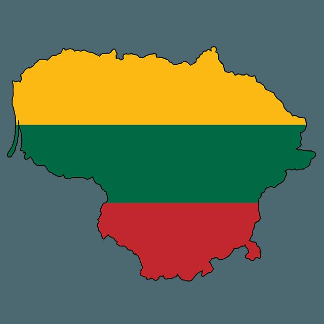 Litwa a SEO - pozycjonowanie na wschodzie