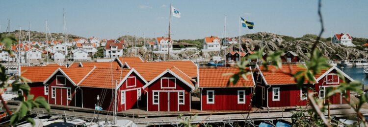 Pozycjonowanie w Szwecji. Jak działać na skandynawskim rynku?
