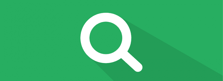 Search on the website - UX