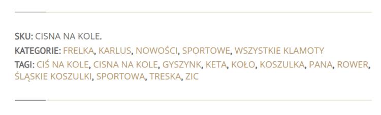 SEO po śląsku - tagi