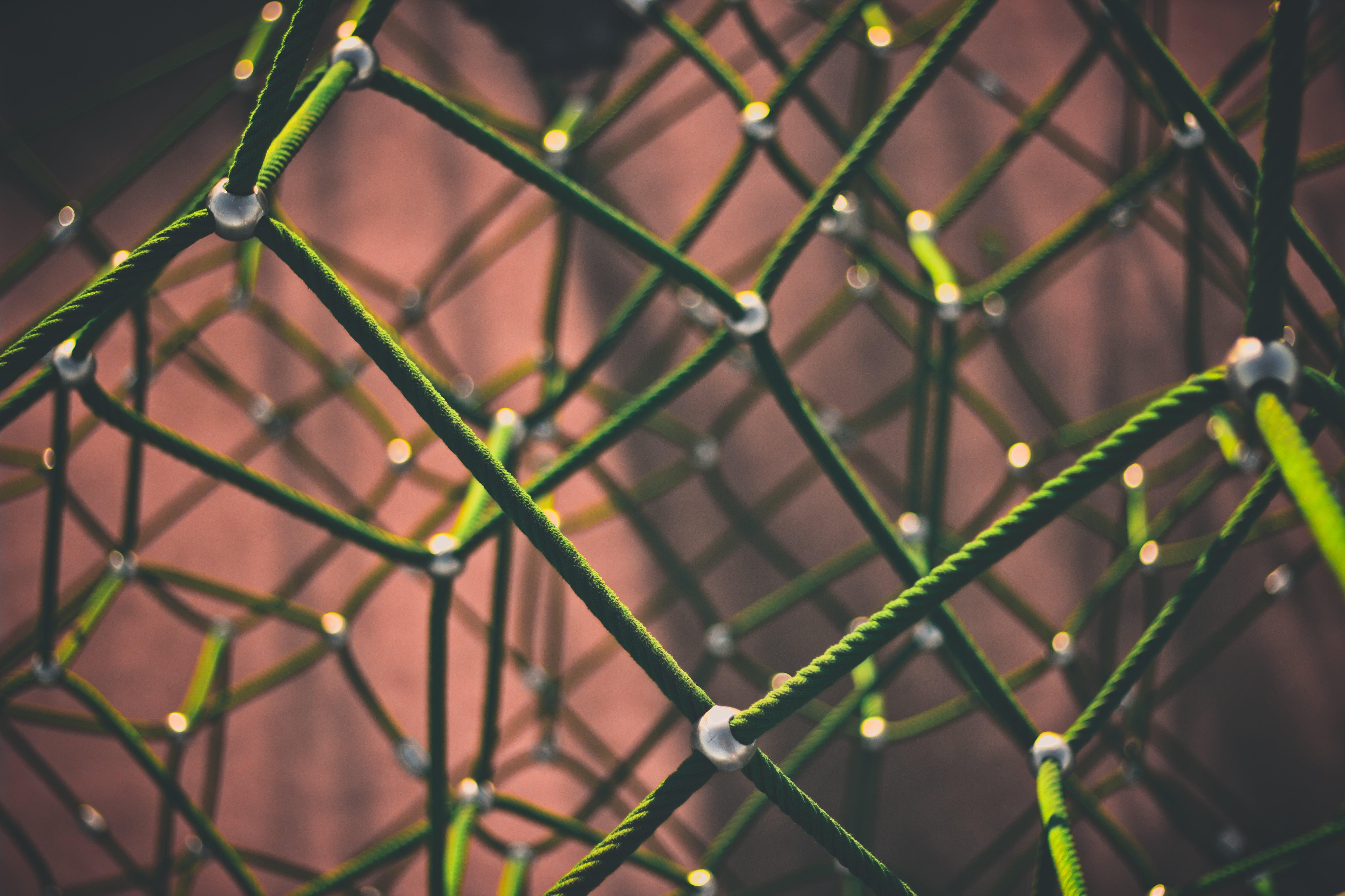 Topical authority: co to jest i jak wpływa na SEO?