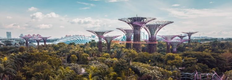 Widoczność w Singapurze. Jak pozycjonować strony?