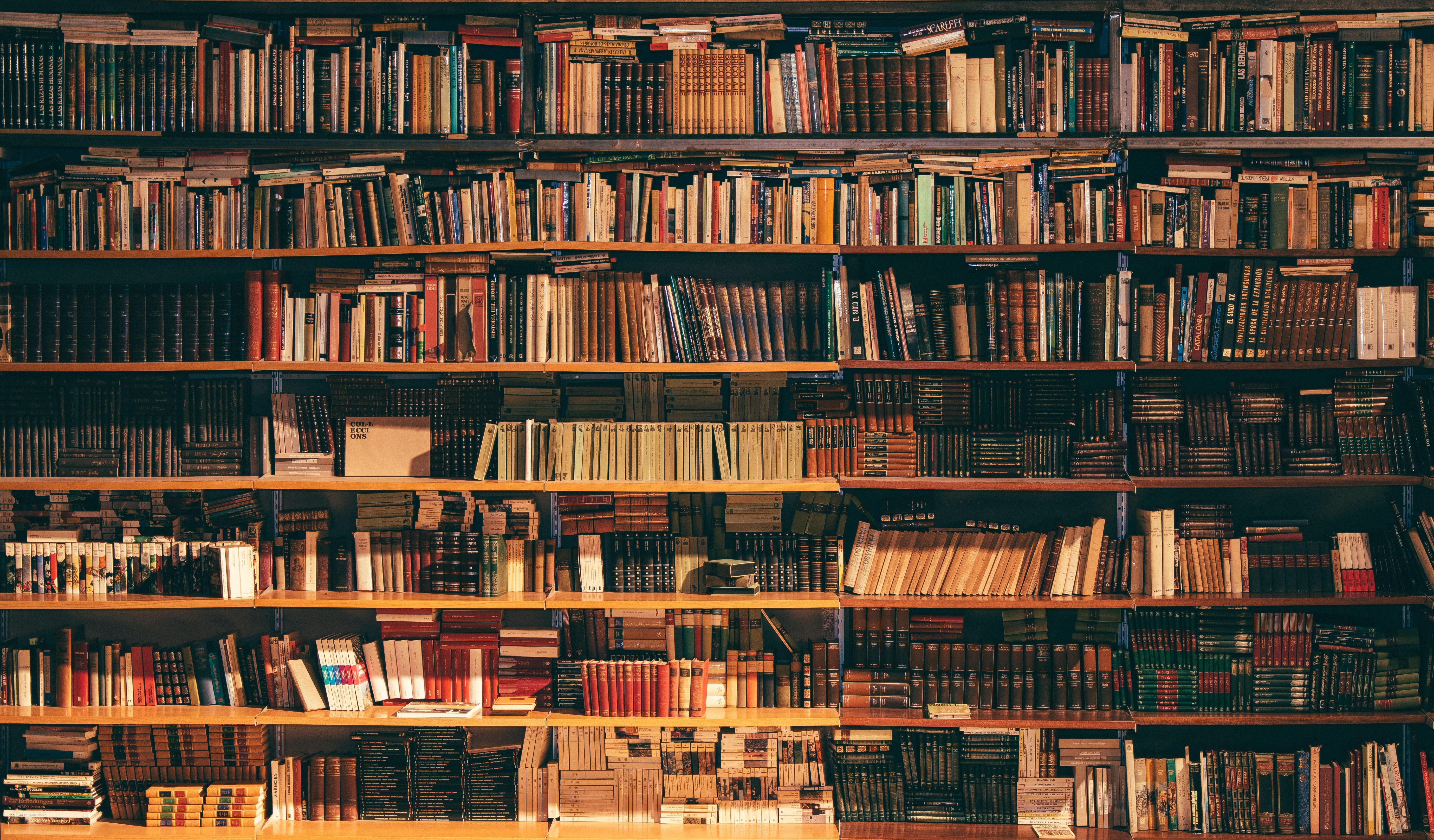 Księgarnie internetowe: jak zwiększyć ich widoczność w sieci?