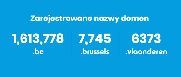 Ilość poszczególnych domen w Belgii