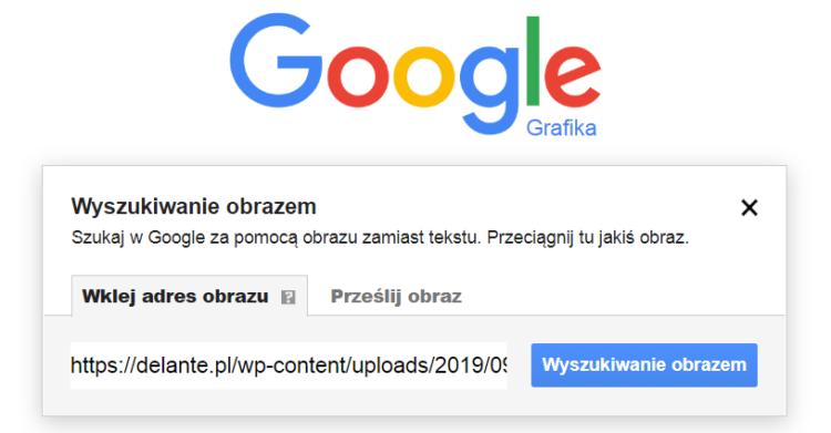 Wyszukiwanie obrazu Google grafika - adres obrazu
