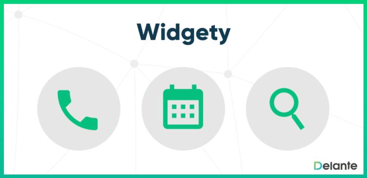 widget definicja