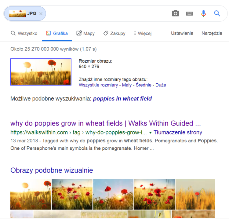 Wyniki wyszukiwania obrazem