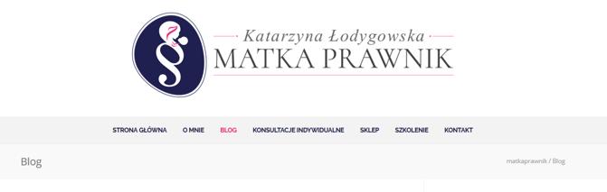 Branża prawnicza - przykład strony www