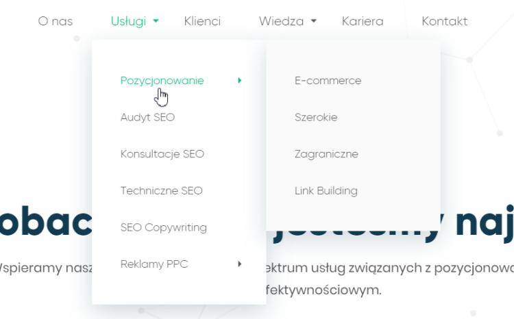 Nawigacja strony - podkategorie