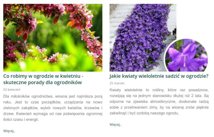 Blog w branży ogrodniczej