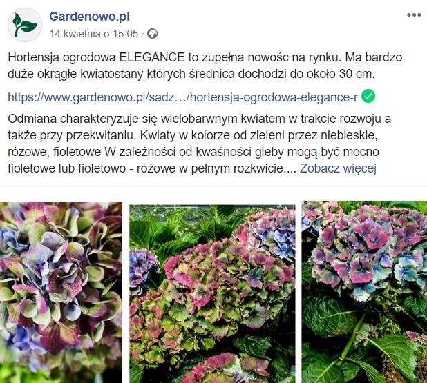 Social media - branża ogrodnicza