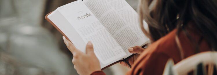 Jak sprawdzić czy ludzie czytają mojego bloga?
