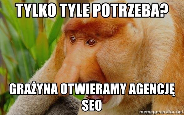 Linkowanie zewnętrzne mem