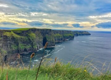 Pozycjonowanie w Irlandii. SEO na Zielonej Wyspie