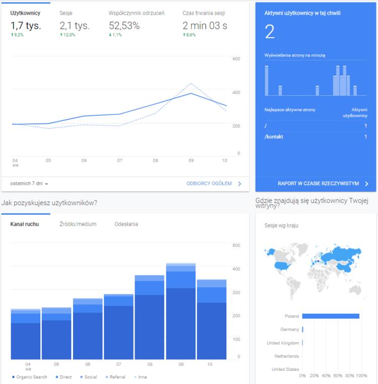 Analiza ruchu na stronie - Google Analytics
