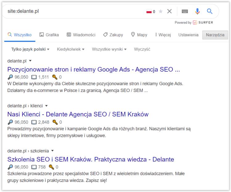 Strona w indeksie Google