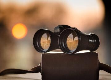 Analiza widoczności w Senuto