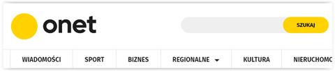 wyszukiwarka wewnętrzna na stronie