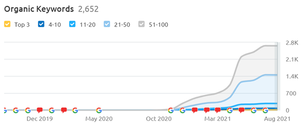 visibility french market seo process example