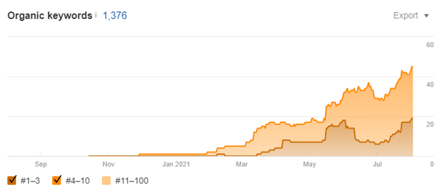 seo in france visibility boost