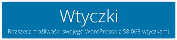 wtyczki system cms wordpress