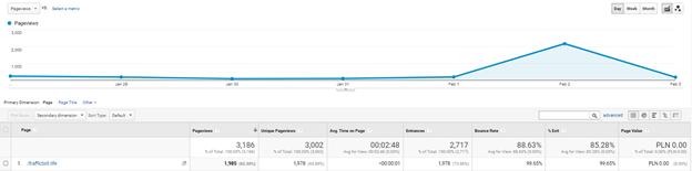 Traffic Bot in Google Analytics