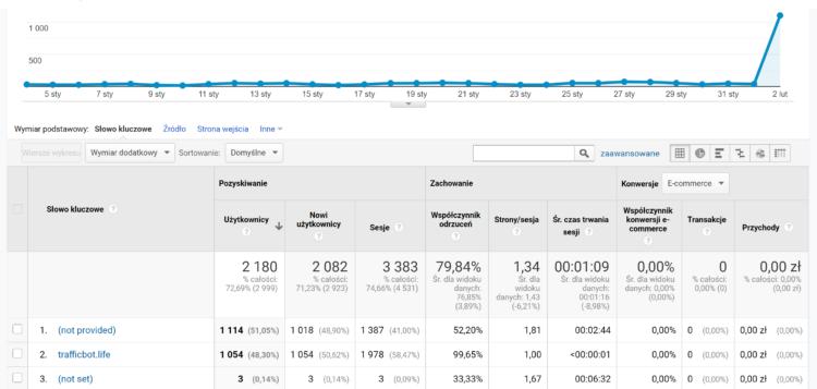 Traffic Bot w Google Analytics