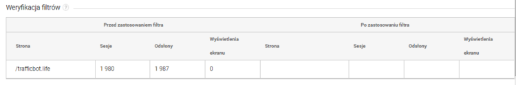 Google analytics filtr - weryfikacja