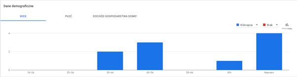 docelowa grupa odbiorców reklamy google ads